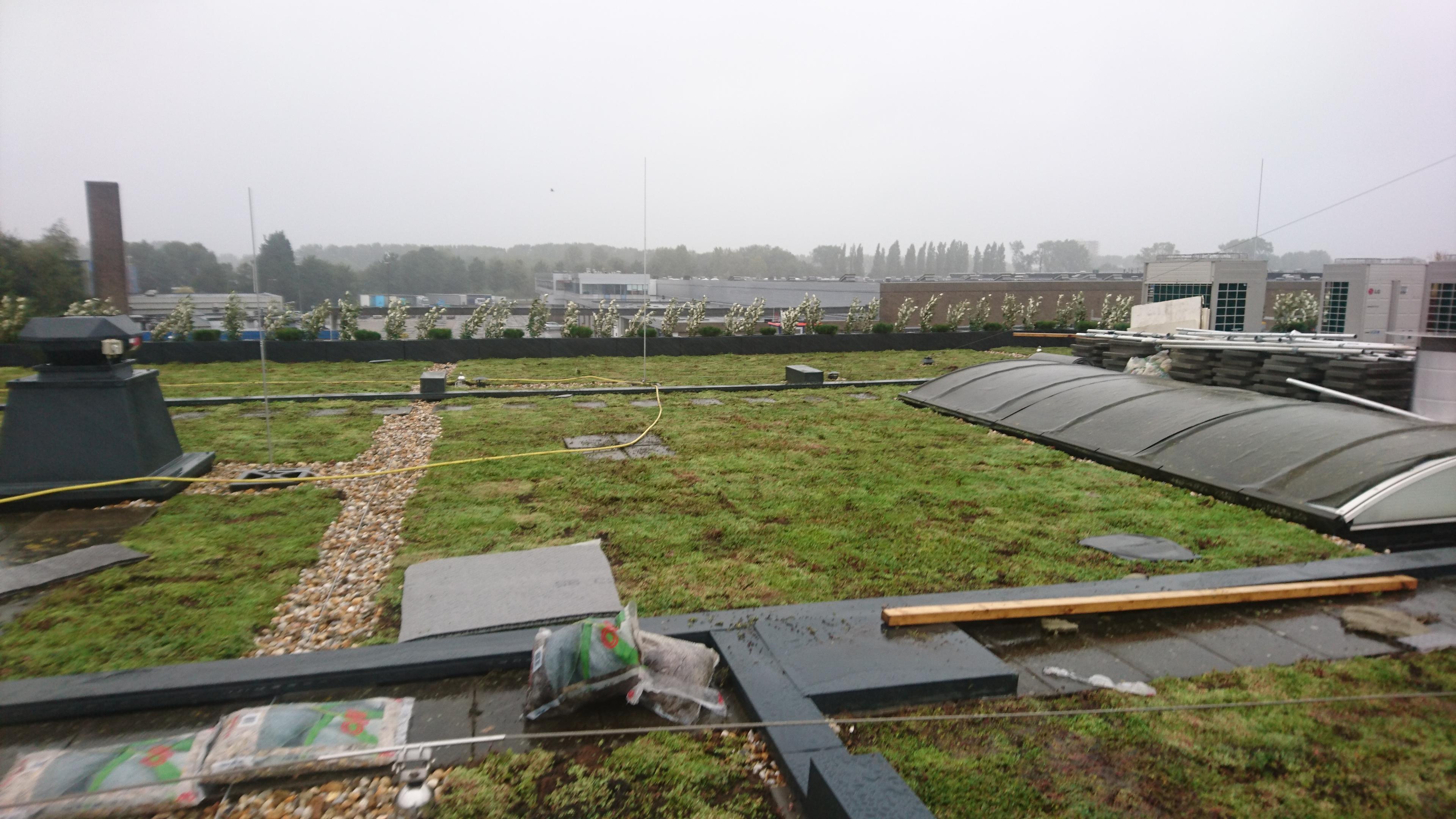 subsidie De Groene Pet in Hengelo