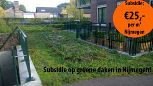 Subsidie groendak tilburg