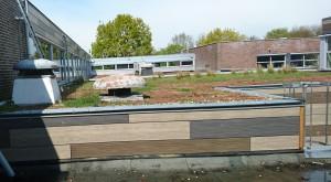 Het groene dak van Reigersbos in Amsterdam