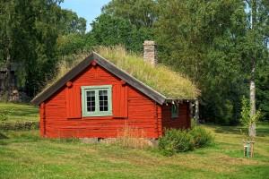 De grasdaken is het oude groendak
