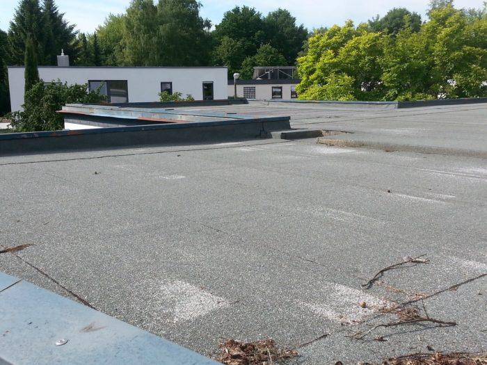 Sedumdak aanleggen | Groenopdak.eu | Specialist in groene daken, gras- sedumdaken en complete daktuinen