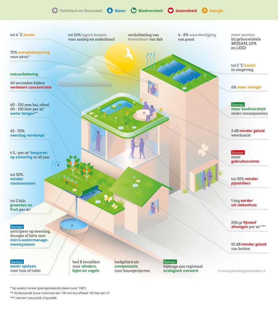 De voordelen van groene daken volgens de Green Deal Groene daken